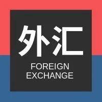 国家外汇管理局就2021年一季度国际收支状况答记者问