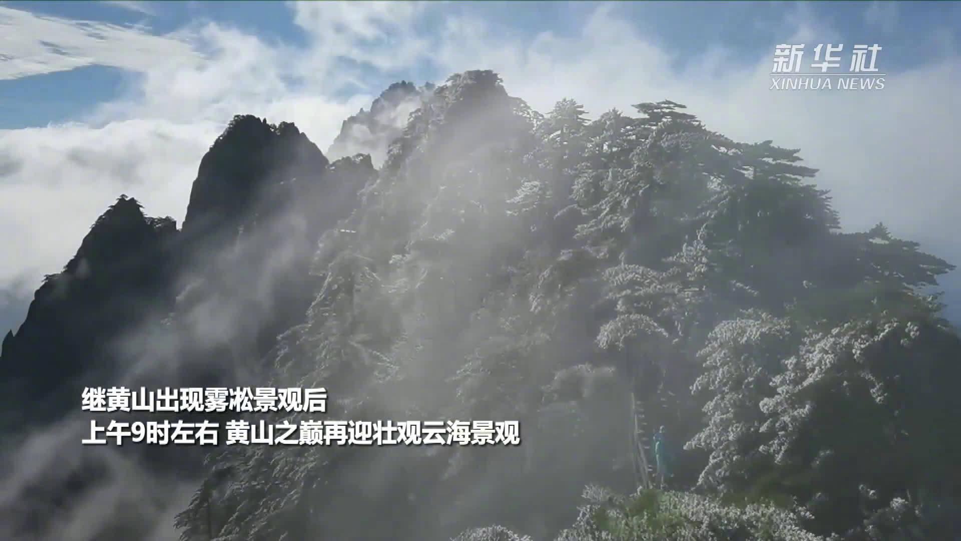黄山现雾凇云海