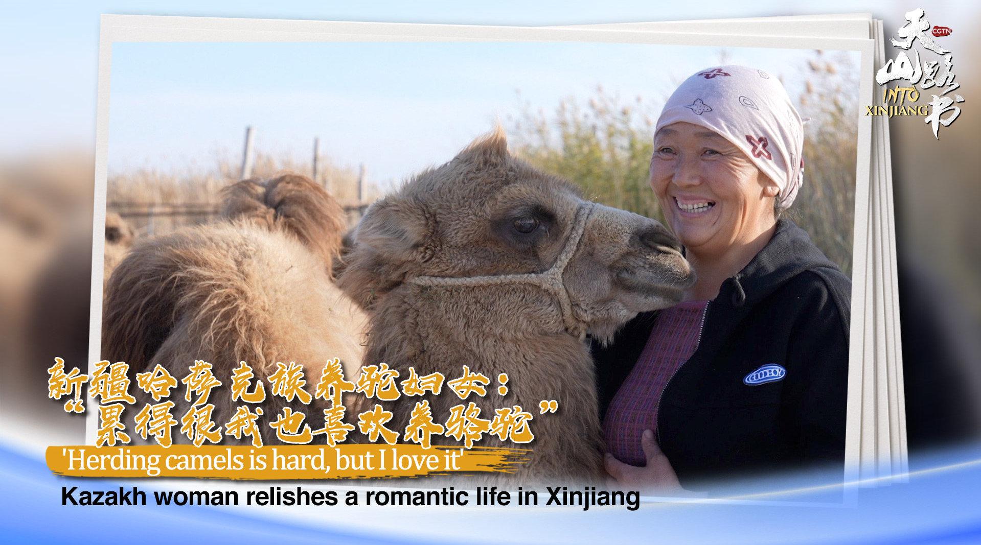 新疆哈萨克族养驼妇女