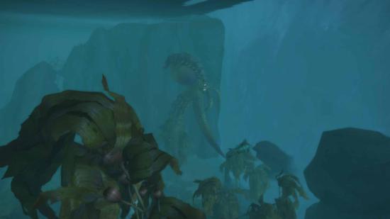 探索发现:位于纳沙塔尔地区海墙外的深渊水世界