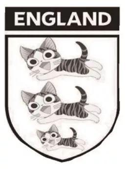 经过几届世界杯的低迷表现后,英格兰在球迷心中欧洲豪强的形象早已不复存在