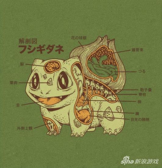 解剖那些传说中的生物(日本民间妖怪,怪兽以及西方神话怪物全包括~)