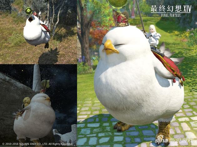 初代胖陆行鸟