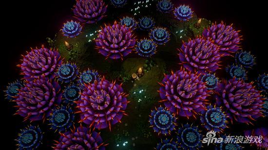 随火光绽放的刺花也是一种风景