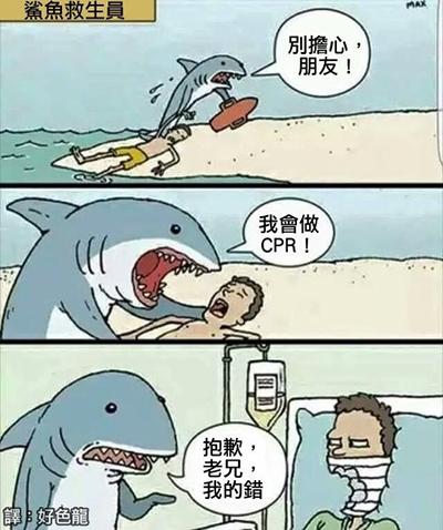 每一个袭击人类的鲨鱼都是这么想自己的