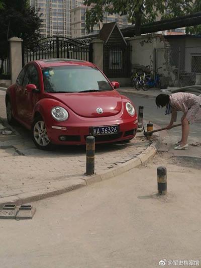 拯救落入桩中的野生幼年汽车