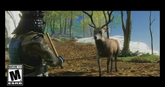撸宠模拟器!《对马》导剪版新增多个可互动小动物!