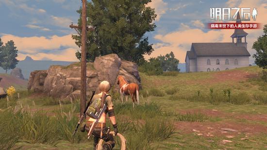 驯服一匹野马,能让你更好地融入当地