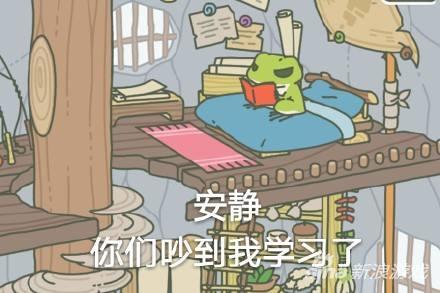 随缘青蛙 玩家并不能实际上指令青蛙去做什么