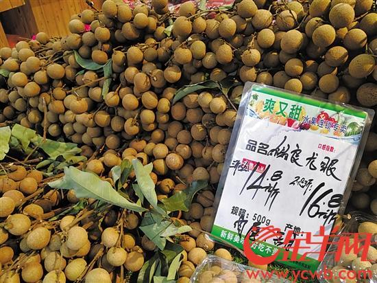 广东上半年雨水偏多 多种岭南佳果产量同比下降
