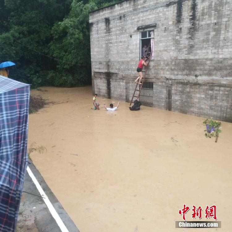 """受台风""""白鹿""""残留影响广东现灾情 所幸无人员伤亡"""