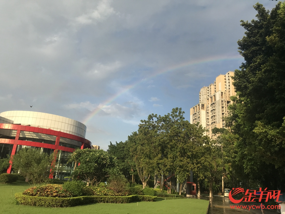 昨天广州雨后出彩虹你看到了吗