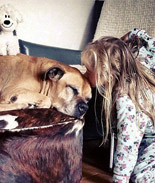 女孩泪目和爱犬最后道别