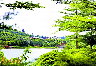 广东新增7处国家级湿地公园 花都湖将成国家级