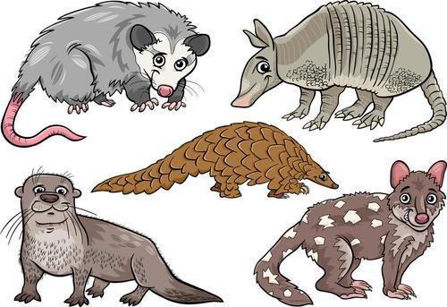 《广州市禁止滥食野生动物条例》表决通过