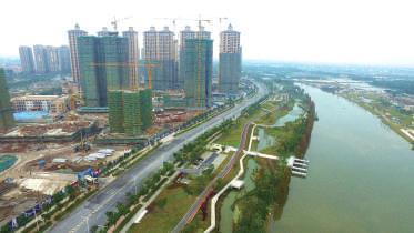 桂畔海水系综合整治工程进展顺利
