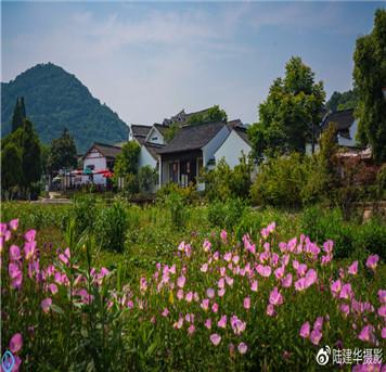 陆建华摄影:南京有座不老村庄