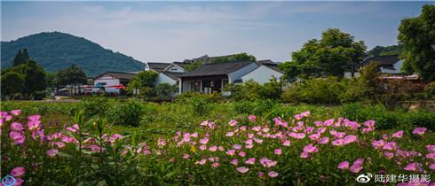探访南京的不老村庄