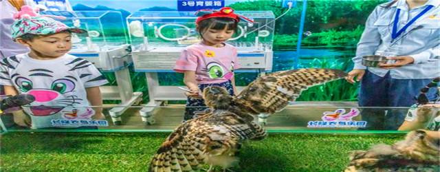 """长隆飞鸟乐园开放""""鸟类繁育中心"""""""