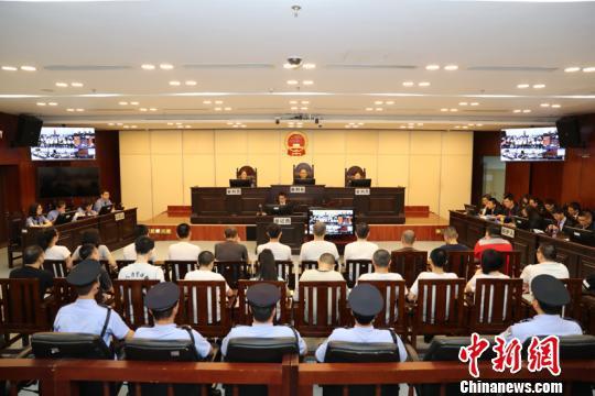 庭审现场。苏华 摄
