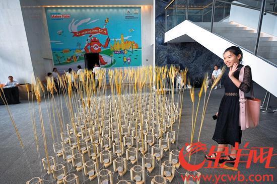 在深圳创客周现场,能感知人体活动并作出反应的麦浪吸引眼球 记者王磊摄
