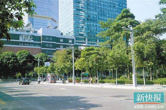 ■南方电网广州供电局在天河南二路投产的市内首批智慧路灯。通讯员供图