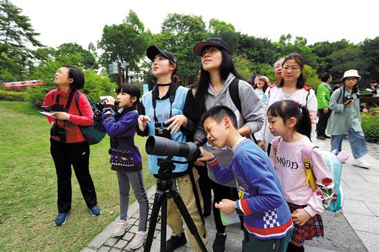 广州正迎候鸟迁徙高峰期 五大赏鸟胜地来打卡!