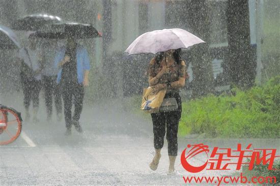 昨日,深圳遭遇强降雨 记者 王磊 摄