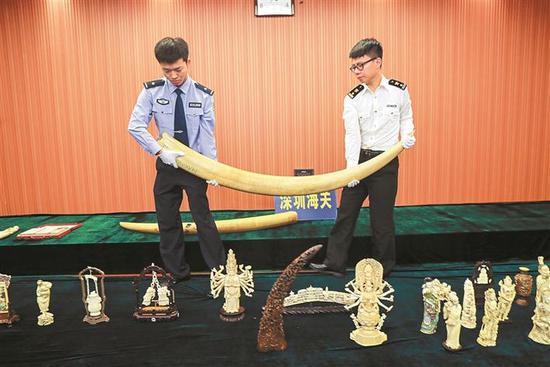 海关查扣涉嫌走私的象牙、犀牛角、红珊瑚等濒危物种及制品。