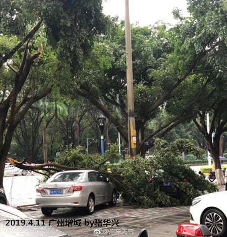 清远清城、广州增城、惠州博罗、东莞长安还出现了局地冰雹。