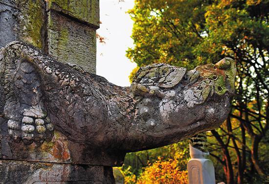 被列入世界遗产名录的明孝陵,连秋色亦这般厚重