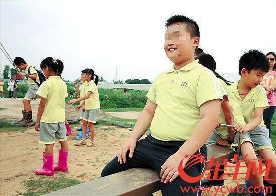 """小学生中每个班都有几个""""小胖墩""""。金羊网记者王俊伟摄"""