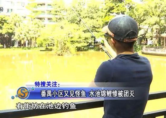这个是番禺南村镇华南新城小区里中心湖,街坊平时都喜欢在这里遛娃。