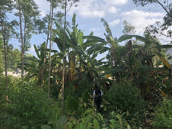 据亲属介绍,小文曾向家属、警方表示,9月23日,她被一名男子带到此处草丛中被性侵。这里距离小文家约1公里。