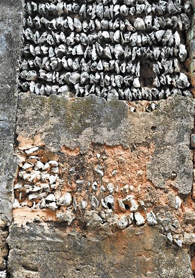位于沙湾古镇安宅里的蚝壳墙。