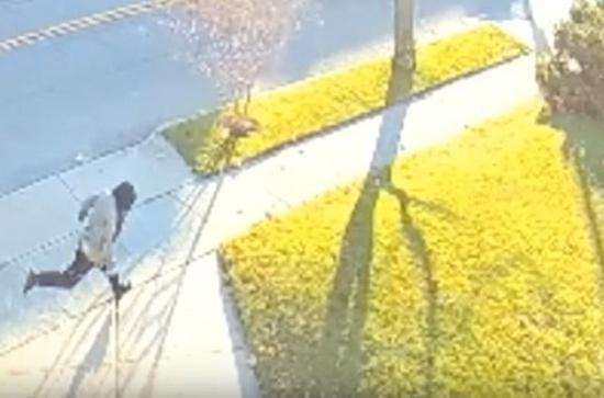 监视器拍到凶手伯克利的身影。