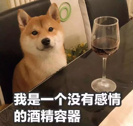 喝到凌晨3点多,何某叫了代驾又去一家宵夜档吃火锅,期间又喝了一瓶啤酒!