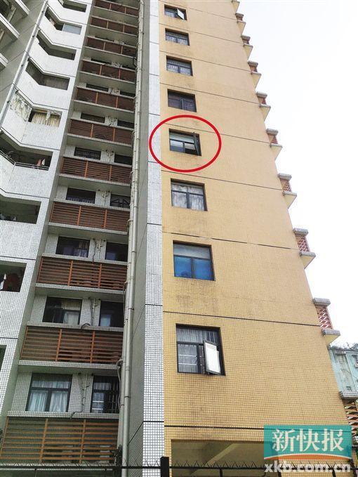 图中红色圆圈就是出事男童坠楼的窗户。新快报记者 代国辉/摄