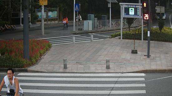李某某,违法时间:2017年9月16日,地点:新洲莲花路口东侧