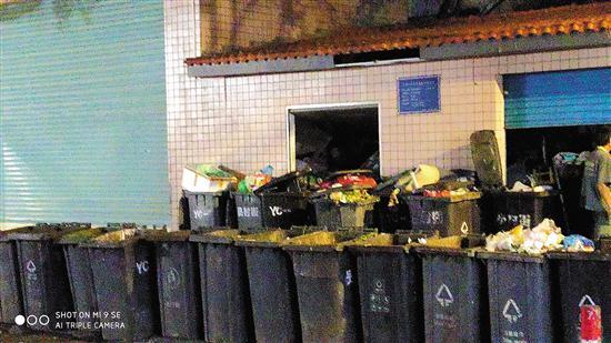 晚上八九点钟,近百个垃圾桶排满百合路 爆料人供图