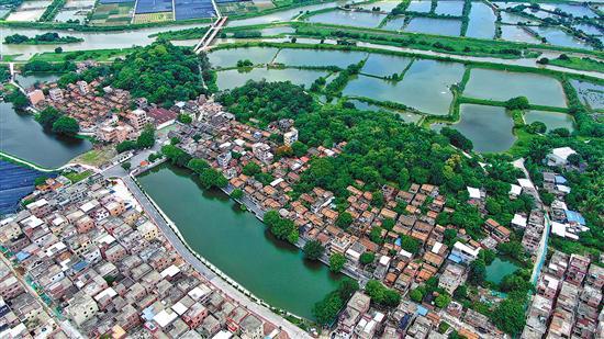 美丽乡村多了69个新成员 广州美丽乡村已达374条