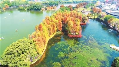 湖泊润泽着广州的一方水土,也曾经是城市连通海外、走向世界的重要枢纽。