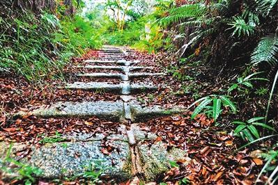 在花都百步梯,一条深深的坑道贯通了每层石阶。