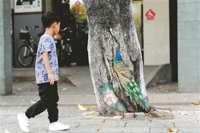 """""""孔雀树""""吸引了男孩的目光。"""