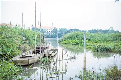 蚌湖流溪河畔古码头