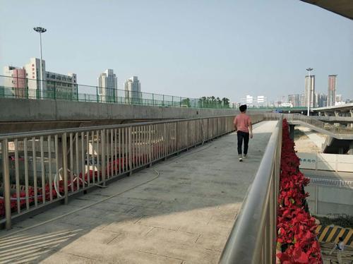 新投入使用的天桥方便南联村居民出行。
