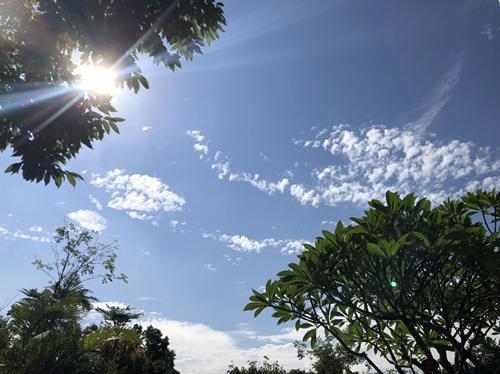 广州上午蓝天白云,气温明显上升