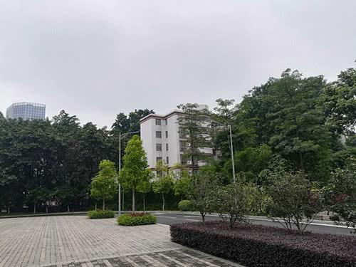 5月31日上午,广州没有明显降水,阴天间多云为主。