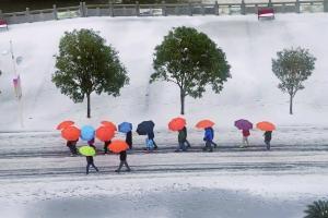 韶关南岭国家森林公园,十余名路人撑着雨伞走过。