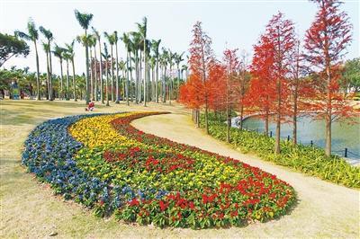 海滨公园春节花展已基本搭设完毕,静待游客到来。